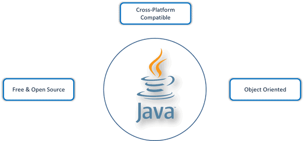 Introduction to Java in Hindi